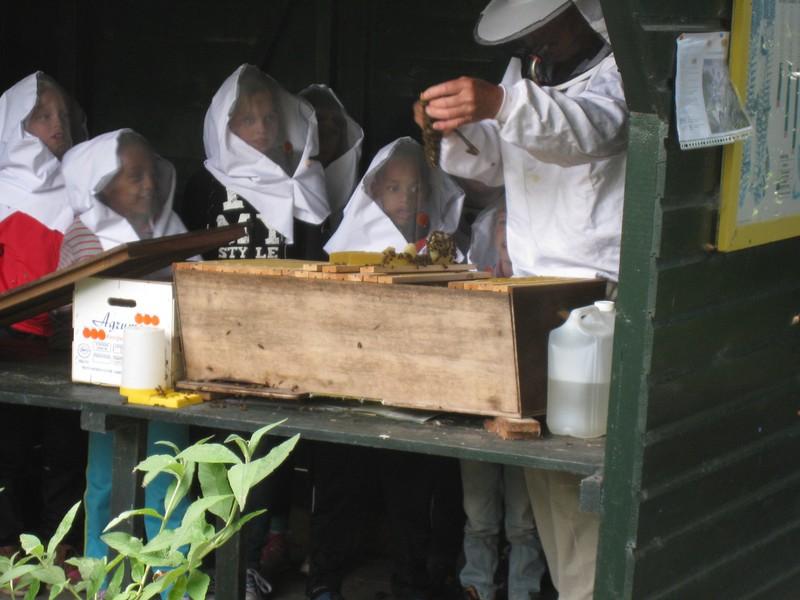Bijenles