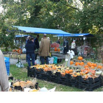 markt in de kloostertuin