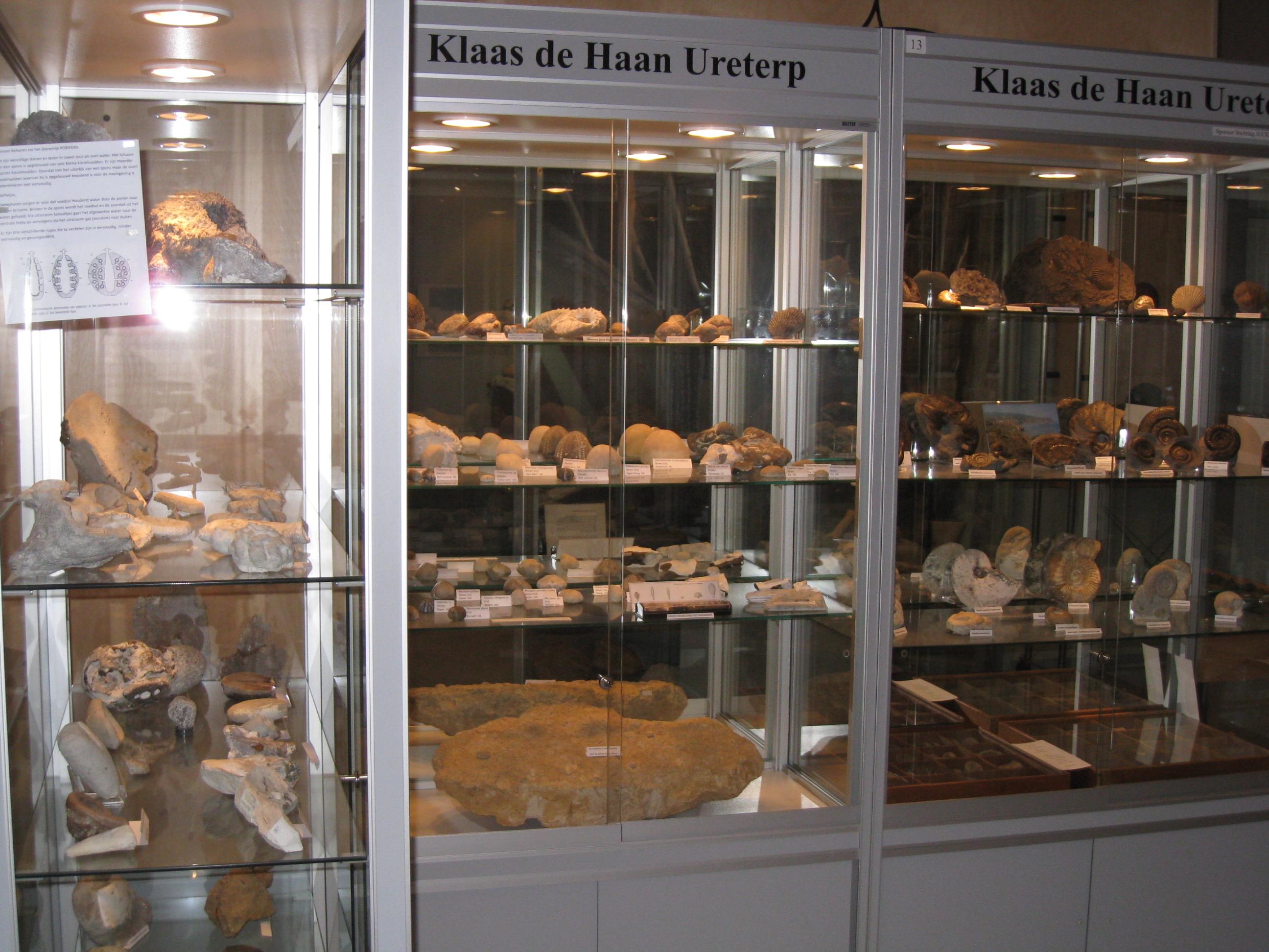 Bodemvondsten dag het IJstijdenmuseum - GEANNULEERD