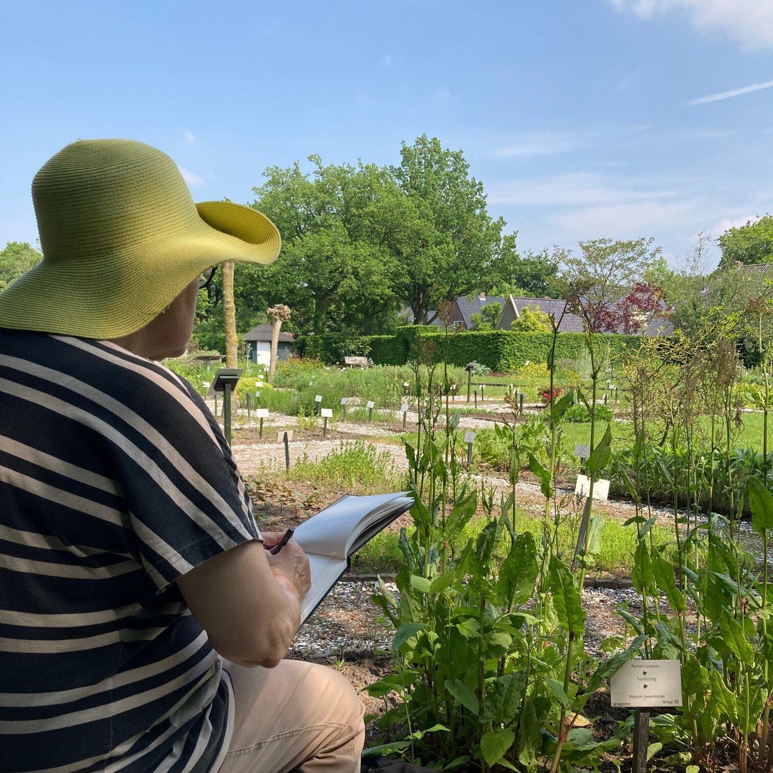 Botanische teken- en wandeltocht | Hennie Dijk-Stel