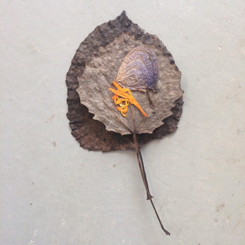 Creatieve inspiratiedag | Suzan Bosch