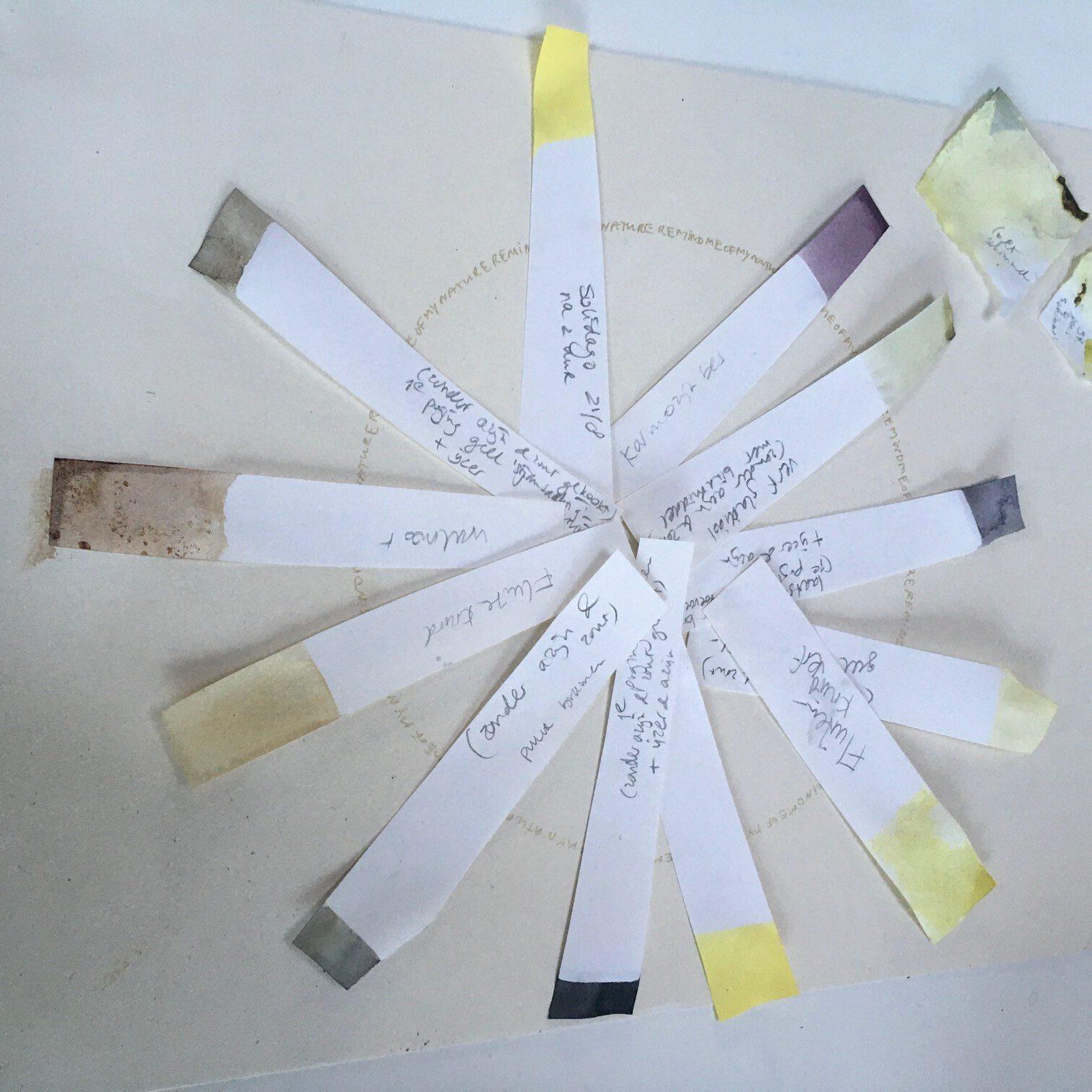 Workshop Natuurlijke inkt maken | Suzan Bosch